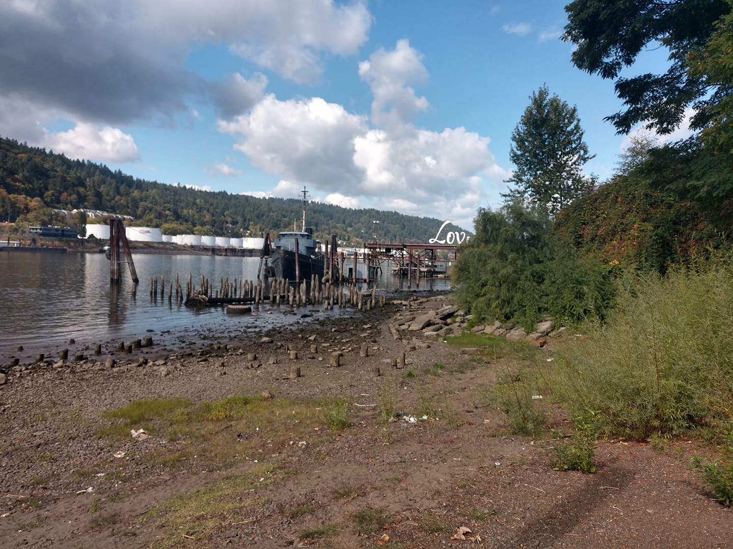Willamette River Beach Cleanup - PDX Local